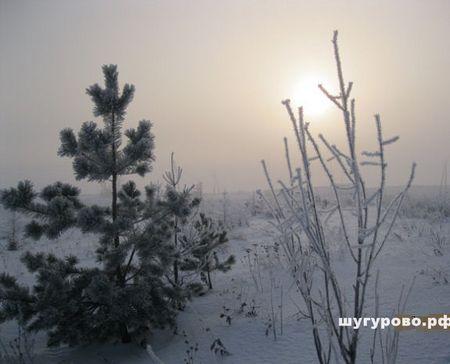 Шугкрово зимой