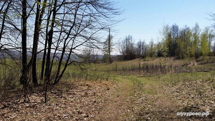 весна в шугурово 2016